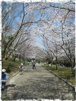 千里中央公園8.jpg