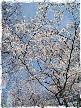 千里中央公園9.jpg