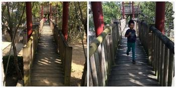 唐池公園5.jpg