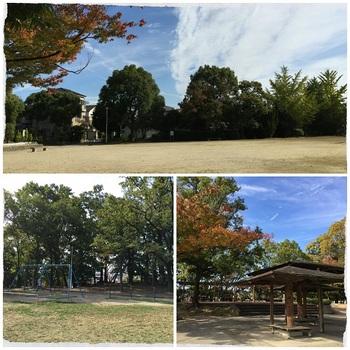 唐池公園8.jpg