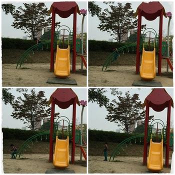 樫ノ木公園6.jpg