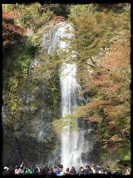 箕面の滝8.jpg