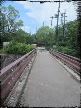 箕面西公園1.jpg