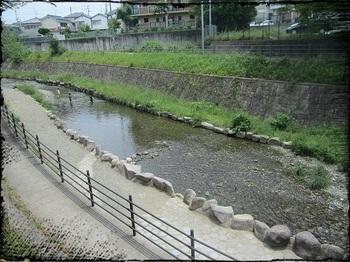 箕面西公園7.jpg