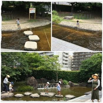 豊津公園2.jpg
